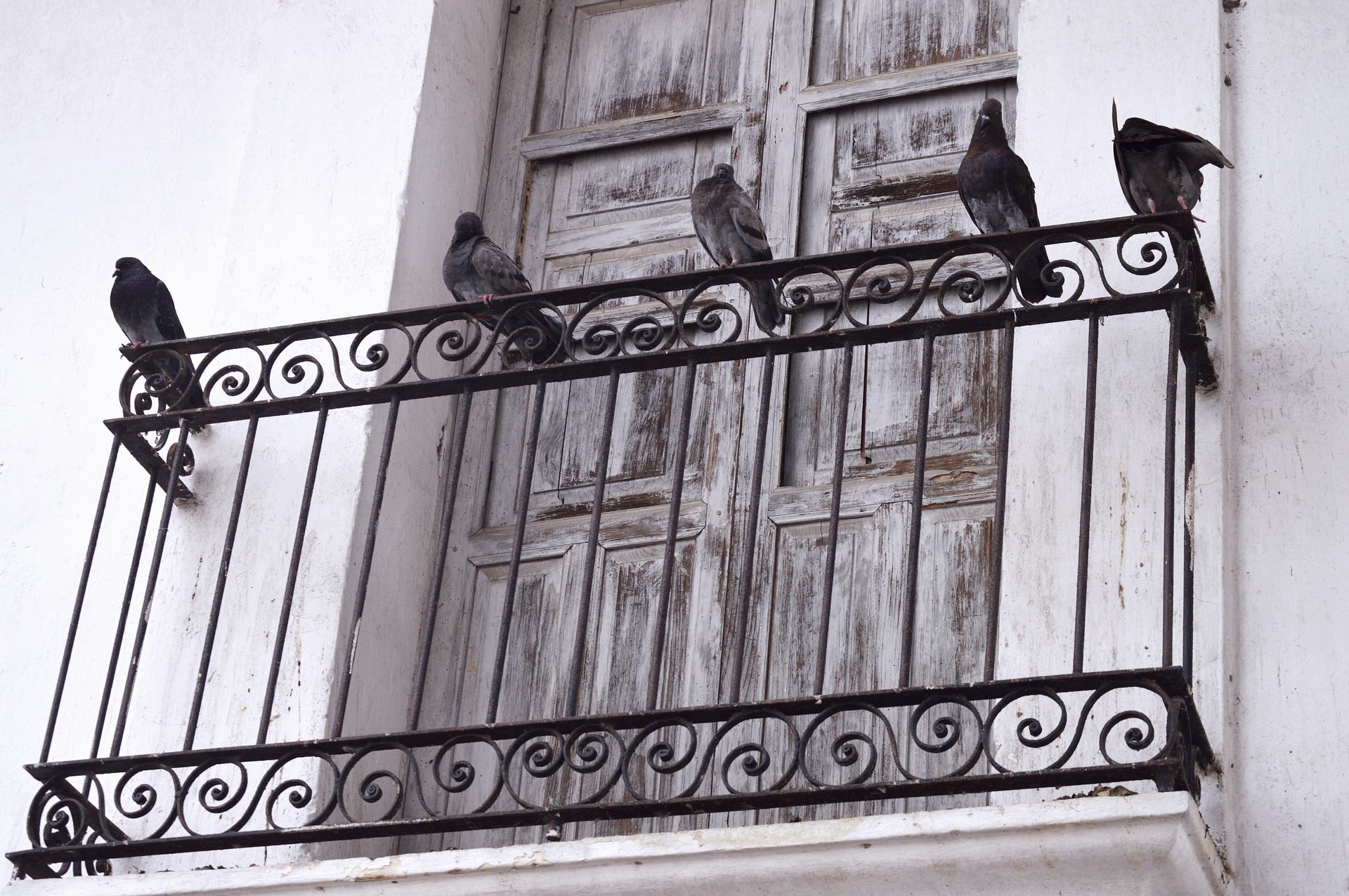 tralki do balustrad